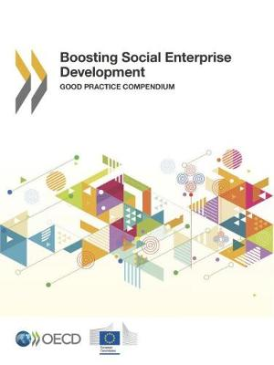 Boosting social enterprise development: good practice compendium (Paperback)