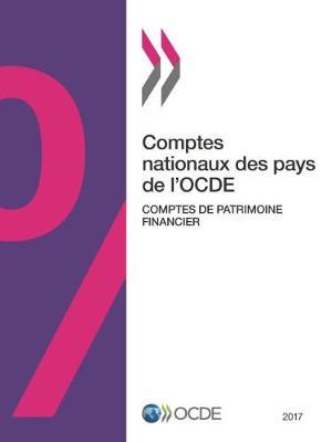 Comptes Nationaux Des Pays de L'Ocde, Comptes de Patrimoine Financier 2017 (Paperback)