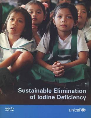 Sustainable Elimination of Iodine Deficiency: Progress Since the 1990 World Summit for Children (Paperback)
