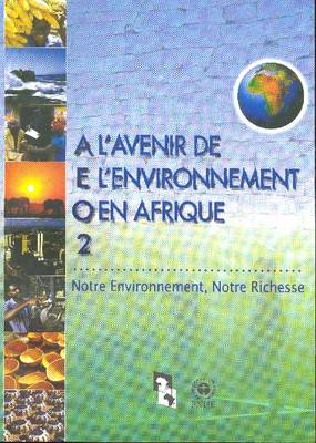 L Avenir de L Environnement En Afrique 2: Notre Environnement Notre Richesse (Paperback)