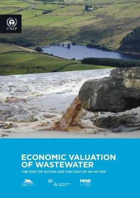 Economic valuation of wastewater: the cost of action and the cost of no action (Paperback)