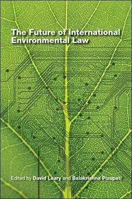 The future of international environmental law (Paperback)