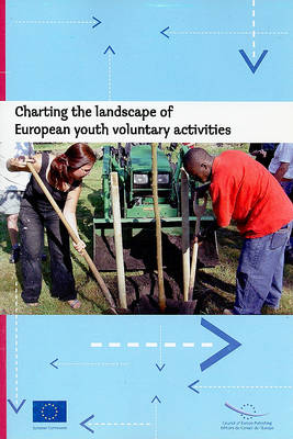 Charting the Landscape of European Youth Voluntary Activities (Paperback)