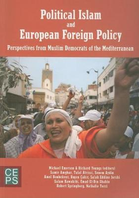 Political Islam and Europe: The Rise of Muslim Democrat Political Parties of the South Mediterranean (Paperback)