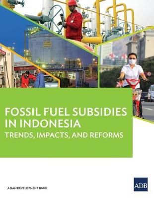 Fossil Fuel Subsidies in Indonesia: Trends, Impacts, and Reforms (Paperback)