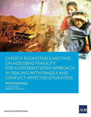 Experts' Roundtable Meeting on Assessing Fragility for a Differentiated Approach in Dealing with Fragile and Conflict-Affected Situations (Paperback)