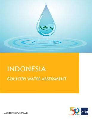 Indonesia Country Water Assessment (Paperback)