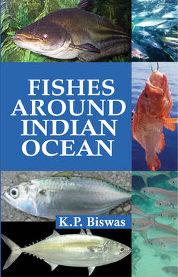 Fishes Around Indian Ocean (Hardback)