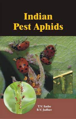 Indian Pest Aphids (Hardback)