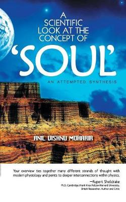 A Scientific Look at the Concept of Soul (Paperback)