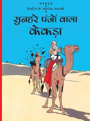 Sunheire Panjo Wala Kekda (Paperback)