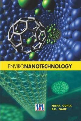 Environanotechnology (Hardback)