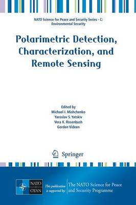 Polarimetric Detection, Characterization and Remote Sensing - NATO Science for Peace and Security Series C: Environmental Security (Paperback)