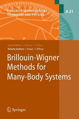 Brillouin-Wigner Methods for Many-Body Systems - Progress in Theoretical Chemistry and Physics 21 (Paperback)