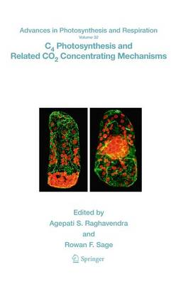 C4 Photosynthesis and Related CO2 Concentrating Mechanisms - Advances in Photosynthesis and Respiration 32 (Paperback)