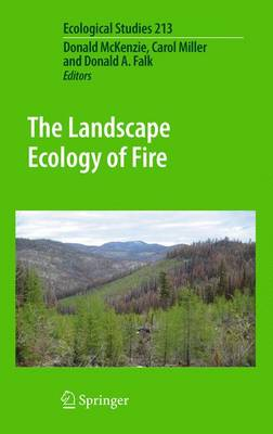 The Landscape Ecology of Fire - Ecological Studies 213 (Paperback)