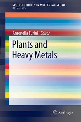 Plants and Heavy Metals - SpringerBriefs in Molecular Science (Paperback)