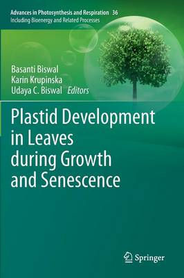 Plastid Development in Leaves during Growth and Senescence - Advances in Photosynthesis and Respiration 36 (Hardback)