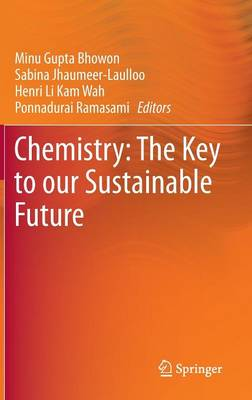 Chemistry: The Key to our Sustainable Future (Hardback)