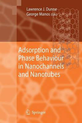 Adsorption and Phase Behaviour in Nanochannels and Nanotubes (Paperback)