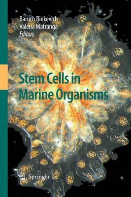 Stem Cells in Marine Organisms (Paperback)