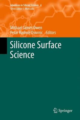 Silicone Surface Science - Advances in Silicon Science 4 (Paperback)