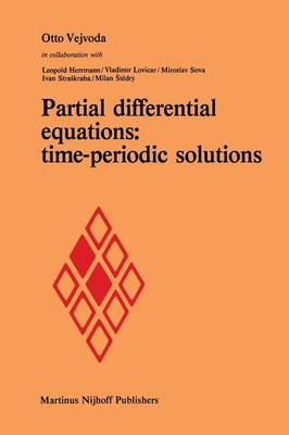 Partial differential equations: time-periodic solutions (Paperback)