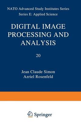 Digital Image Processing and Analysis - Nato Science Series E: 20 (Paperback)