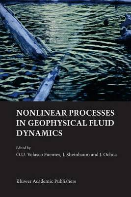 Nonlinear Processes in Geophysical Fluid Dynamics: A tribute to the scientific work of Pedro Ripa (Paperback)