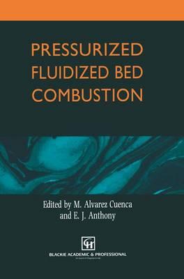 Pressurized Fluidized Bed Combustion (Paperback)