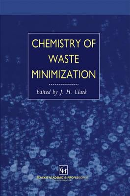 Chemistry of Waste Minimization (Paperback)