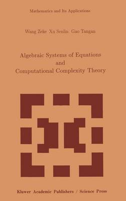 Algebraic Systems of Equations and Computational Complexity Theory - Mathematics and Its Applications 269 (Paperback)
