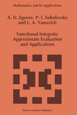 Functional Integrals: Approximate Evaluation and Applications - Mathematics and Its Applications 249 (Paperback)