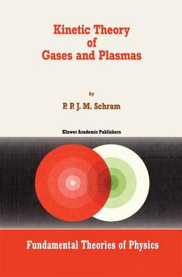 Kinetic Theory of Gases and Plasmas - Fundamental Theories of Physics 46 (Paperback)