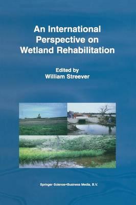 An International Perspective on Wetland Rehabilitation (Paperback)