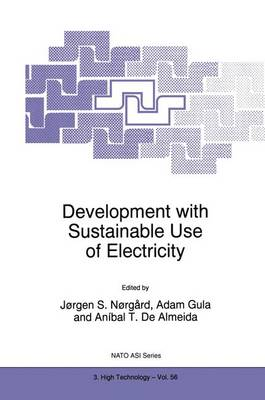 Development with Sustainable Use of Electricity - Nato Science Partnership Subseries: 3 56 (Paperback)
