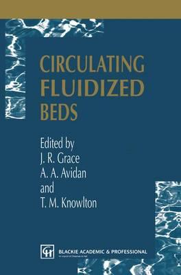 Circulating Fluidized Beds (Paperback)