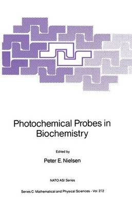 Photochemical Probes in Biochemistry - NATO Science Series C 272 (Paperback)