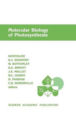 Molecular Biology of Photosynthesis (Paperback)