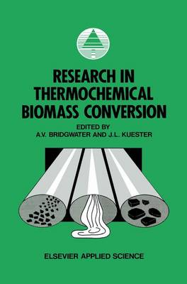 Research in Thermochemical Biomass Conversion (Paperback)