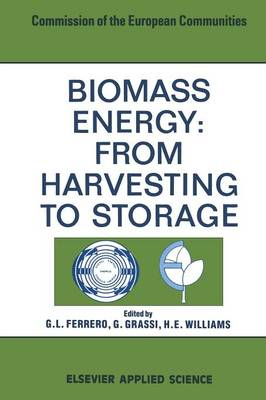 Biomass Energy: From Harvesting to Storage (Paperback)