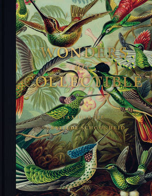 Wonders are Collectible: Taxidermy (Hardback)