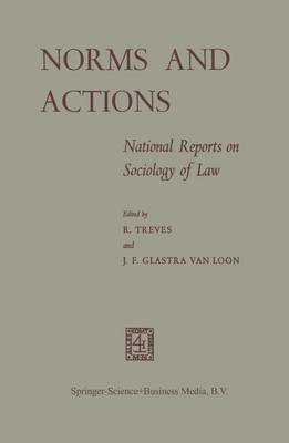 Norms and Actions: National Reports on Sociology of Law (Paperback)