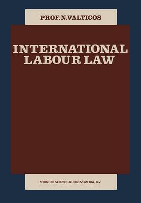 International Labour Law (Paperback)