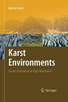 Karst Environments: Karren Formation in High Mountains (Paperback)