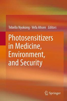 Photosensitizers in Medicine, Environment, and Security (Paperback)