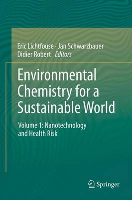Environmental Chemistry for a Sustainable World: Environmental Chemistry for a Sustainable World Nanotechnology and Health Risk Volume 1 - Environmental Chemistry for a Sustainable World 1 (Paperback)