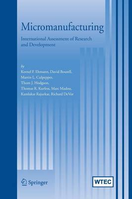 Micromanufacturing: International Research and Development (Paperback)