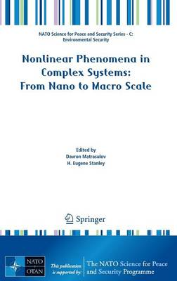 Nonlinear Phenomena in Complex Systems: From Nano to Macro Scale - NATO Science for Peace and Security Series C: Environmental Security (Hardback)