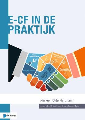 e-CF in de Praktijk (Paperback)